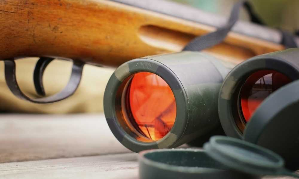 What Do the Numbers on Binoculars Mean The Fine Details of Binoculars