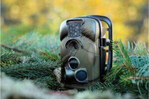 Best Trail Camera in 2021 – Complete Reviews with Comparisons